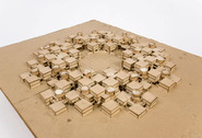 Drienerlo Student Accommodation: model